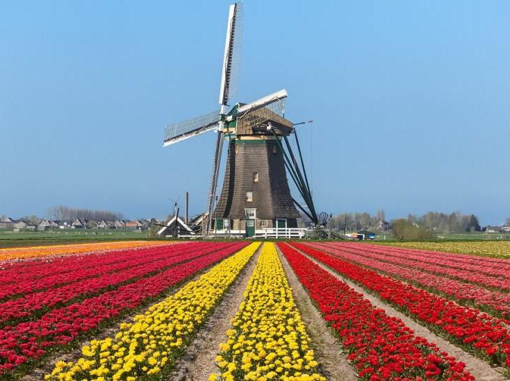 Nederlands Molen